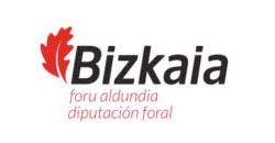 bizkaia-diputacion-foral
